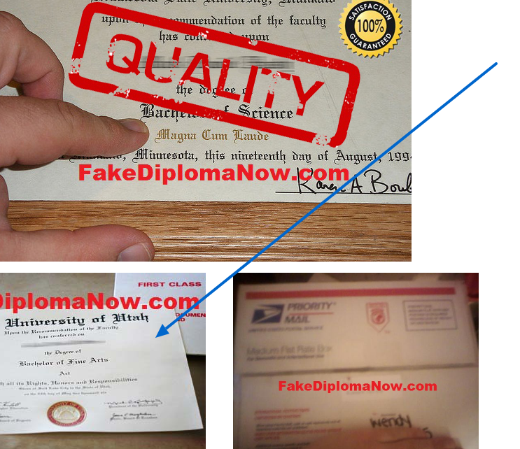 utah diploma being pointed on our samples page